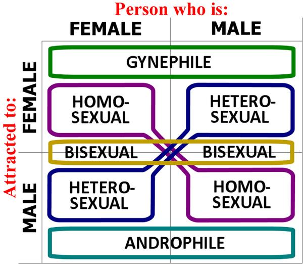 What is the definition or description of: heterosexual?