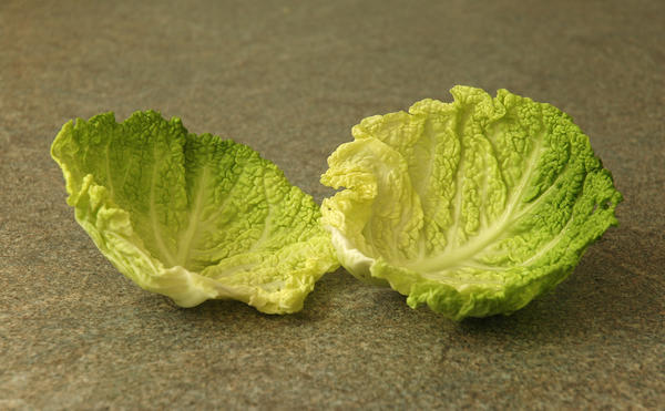 Another site said not to use cabbage leaves to dry up your milk if you're allergic to sulfa. Do you know about this?