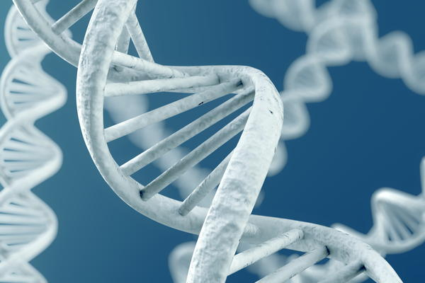 What is the definition of DNA forensics?