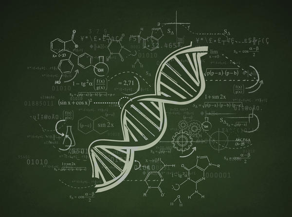 What is a genetic counselor? Is that a doctor?