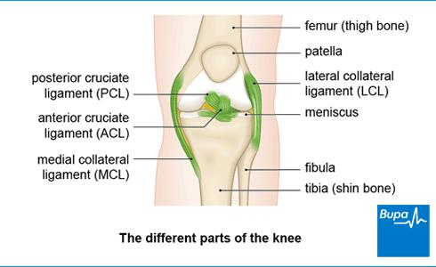 What injury can result in having fluid drained from a swollen joint such as a knee?