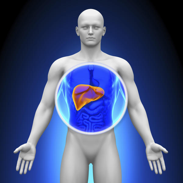 What causes a high liver enzyme?