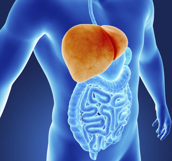 Can high blood protein levels or Sjogren's syndrome cause elevated liver enzymes test results?