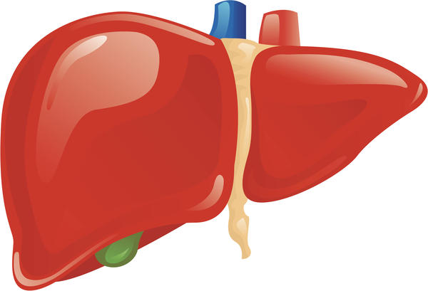 What are the most common symptoms of chronic liver disease?