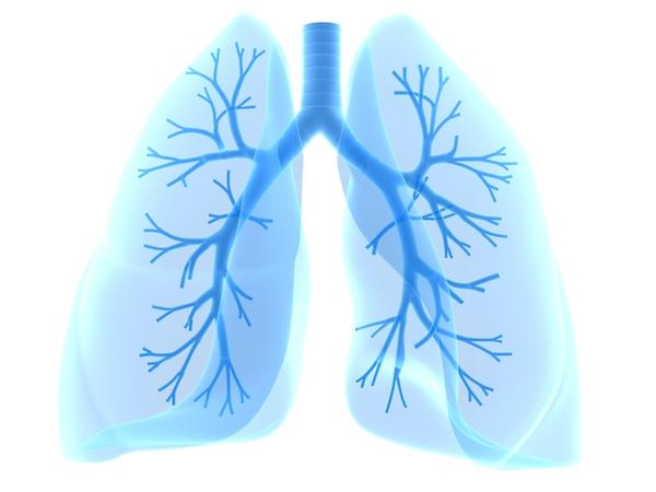 How can lung cancer usually lead to death?