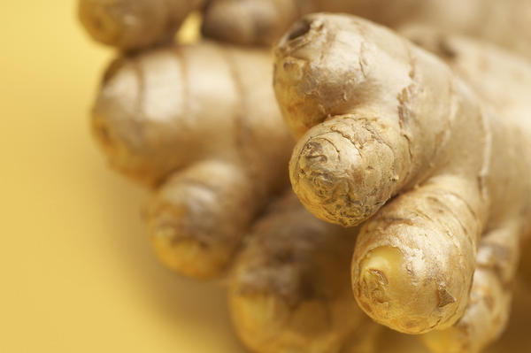 Does ginger induse menstruation ?
