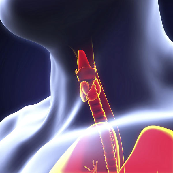 What is the definition or description of: thyroidectomy?