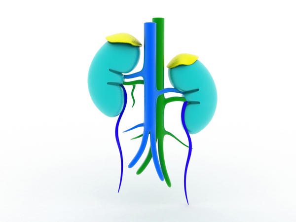What are the presenting symptoms of kidney scarring?