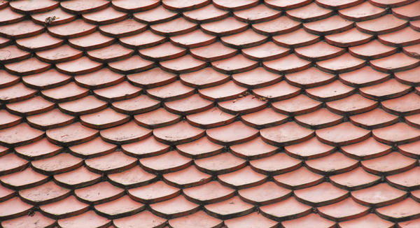 How can I tellnif I have shingles?