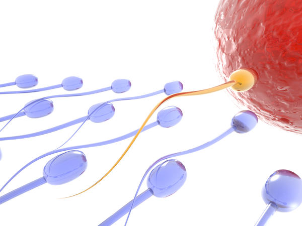 How do i  increase the volums ans quality of my sperm?