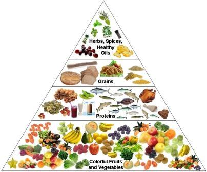 What does the food pyramid tell us?