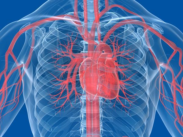 How do blood levels affect cardiac output?