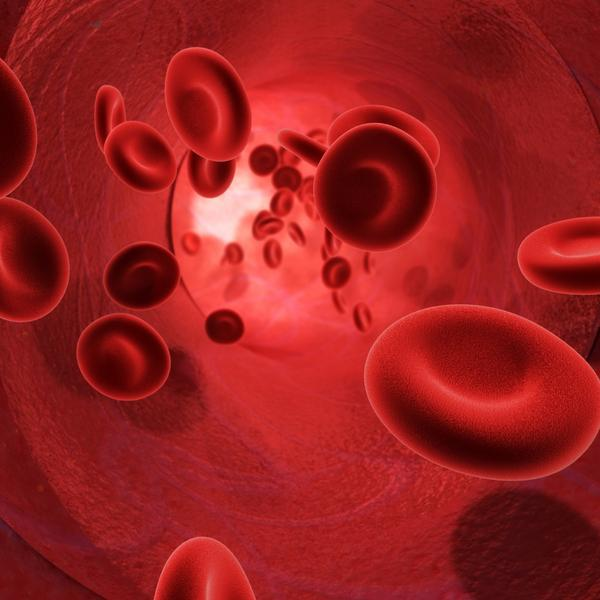What is a small amount of blood in phlegm mean?