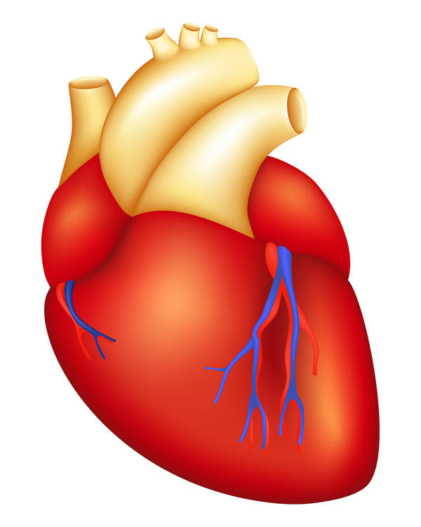 What are symptoms of a faulty heart valve?