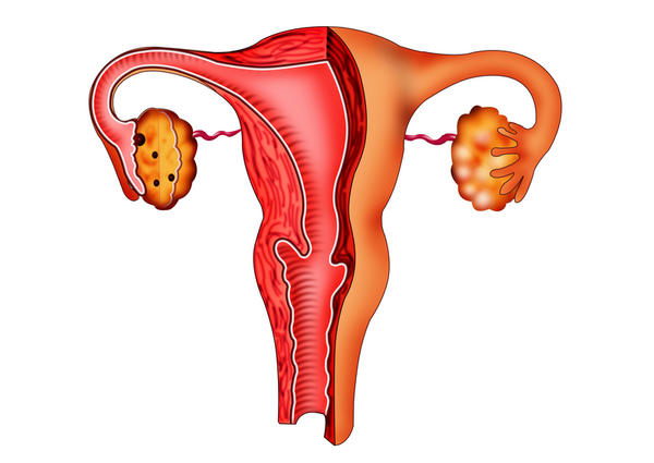What does this mean? endometrium demonstrates a thickness of 0.7 CM and is hyperechoic.  Within the cervix, there is crescentic echogenicity, 1.7 cm.