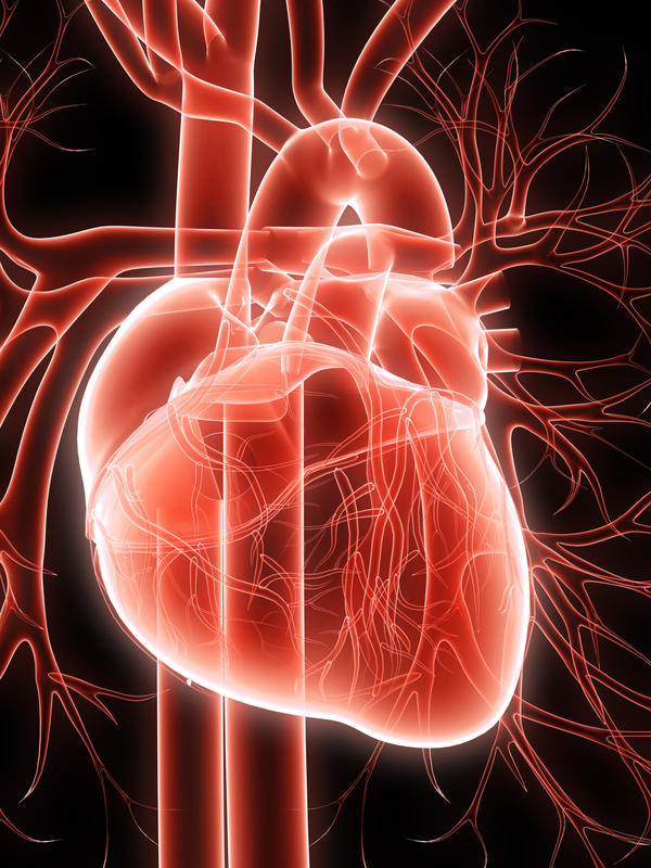 What causes heart murmurs, palpitations and a faster than normal heart beat?