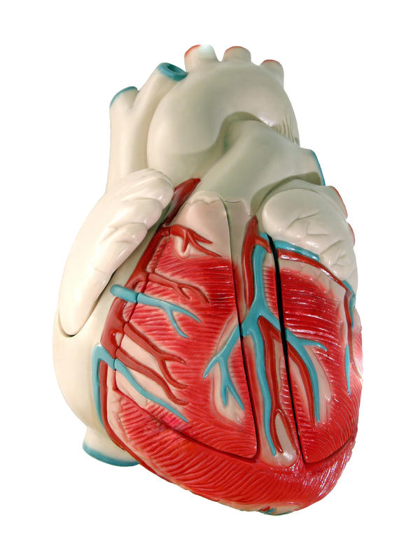What causes loss of oxygen in one side of the heart?