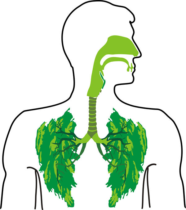 What is lungs opacificification?