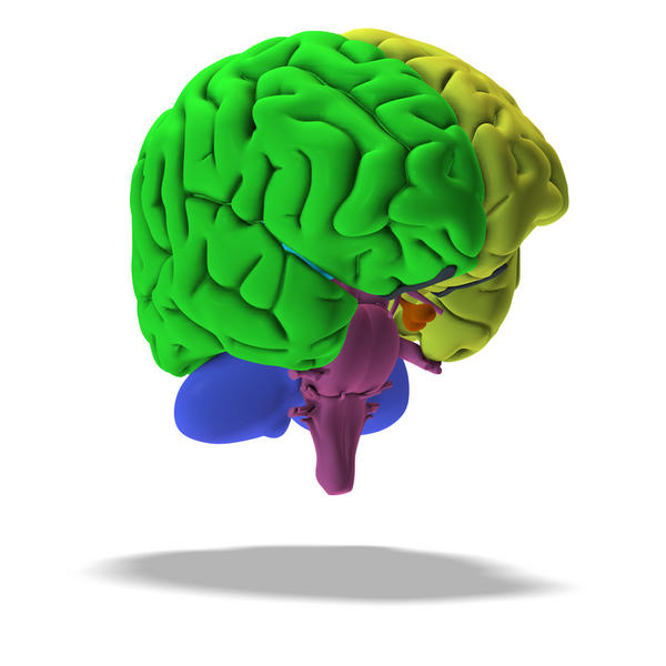 What is frontal lobe epilepsy?