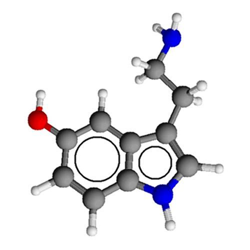Can you tell me if morphine sulfate increases dopamine levels in the brain while decreasing serotonin levels 5-ht ?