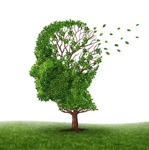 Can somebody with vascular dementia have drastic improvement in function for an extended time?