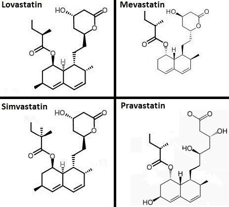 Necessary for a patient to stop taking atorvastatin before angiogarphy?