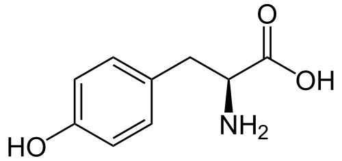 Doctors, what is the difference between l-tyrosine and l-dopamine?