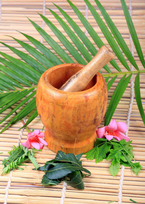 Ayurveda is an alternative medicine to what?