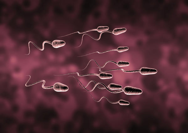 If some sperm got stuck in your vagina canal and you masturbate will th orgasm create contractions letting the sperm swim into your cervix and beyond?