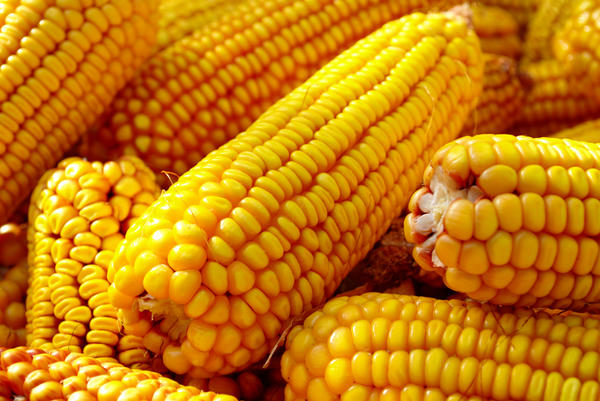 "What is the nutritional value of ""baby corn"" found in chinese food?"