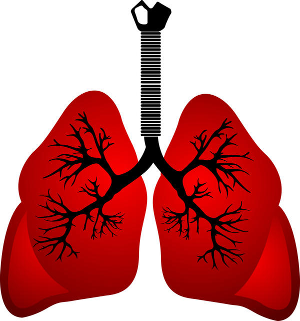 How do you treat a lung infection?