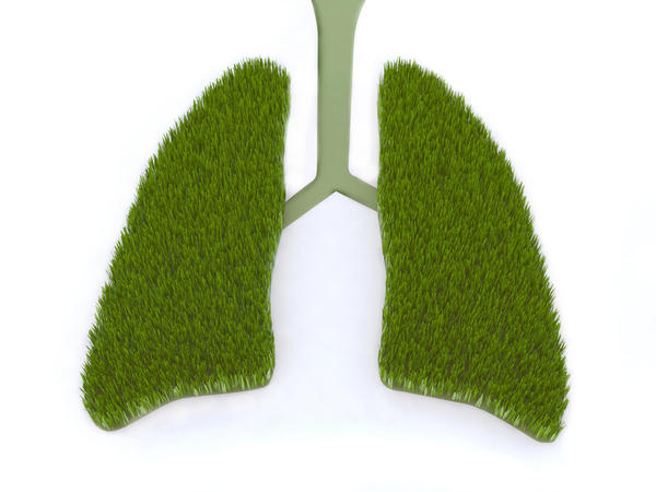 Can I use a humidifier to improve my symptoms of a lung infection?