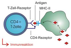 I know that the cause of CD4 count less than 200 cells per mocroliter is AlDS, I want other causes ...