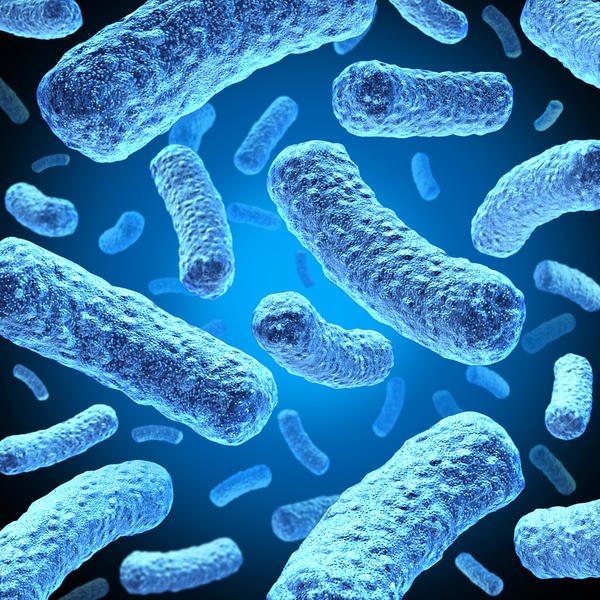 What would the symptoms of a relapsed salmonella infection be?