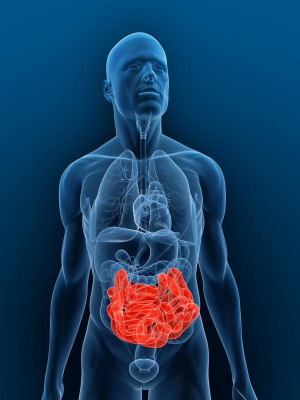 What are the symptoms of enteritis?