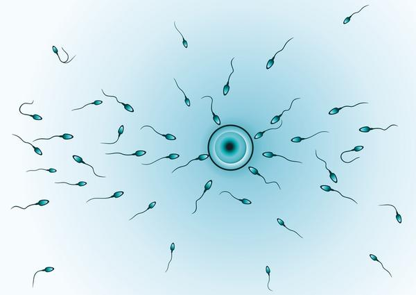 After iui can sperm come out?