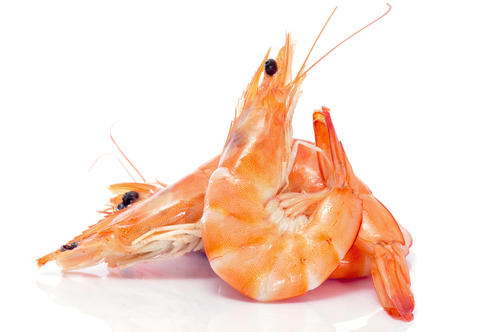 What are the symptoms of a shrimp allergy?