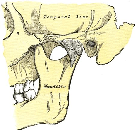I have been eating with one side of the jaw for quite some time.. Now i get an urge to move the jaw to crack the bones..