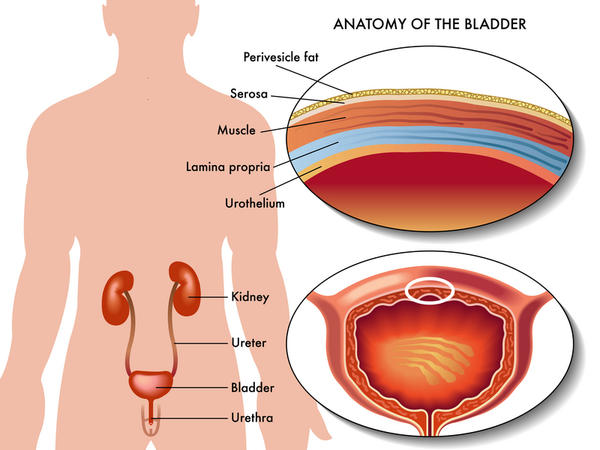 What are symptoms of a fallen bladder?
