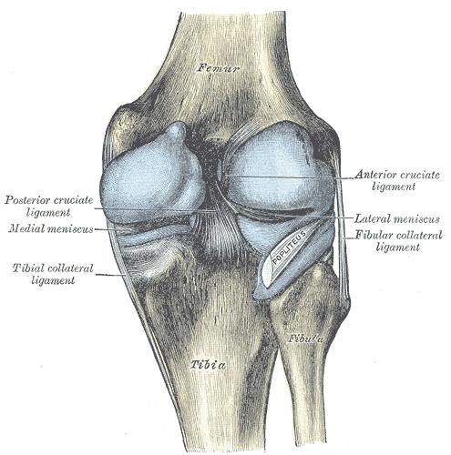 Should there be pain in back of the knee with a ACL problem?
