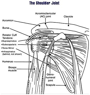 What does a substantial tear in rotator cuff mean?